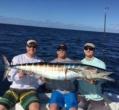 So exciting!!! I Love #wahoofishing @danco_sports #danco_sports @luremin_fishing @candhlures #candh #hoo #yellowfinyachts #canyonreels #zebra #saltwaterfishing #wahoowednesday #offshore #offshorefishing #offshoretrolling #oceantamer @oceantamer #troll #fishing #trolling #floridakeys #florida #wahootrolling #ono #onofishing #bahamas #florida #bimini #thewestend #luredin @luredin @fishbomb @americas_anglers @crack4fish #mahi #engelcoolers @engelcoolers #pelagic #offshorelife @tunaandcompany…