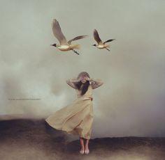 """Limbo"" by Frank Diamond Photography"