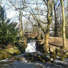 #gdansk #instagram #oliwa #parkoliwski #waterfall