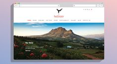 Contemporary bespoke website design and web development for this incredible wine estate in Stellenbosch, South Africa. Online Wine Shop, Design Development, Web Design, The Incredibles, Website, Design Web, Website Designs, Site Design