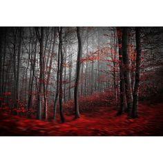 Samanta // Bloody River