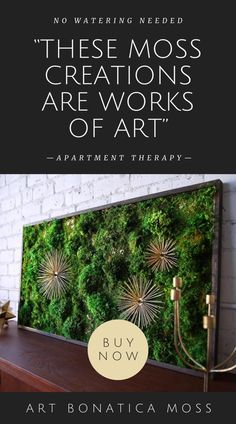 ArtBotanicaMoss brings you stunning moss wall art and moss decor in a wide range of shapes and sizes. Vibrant, lush and texture-rich, every piece is meticulously handcrafted from real preserved moss. Moss Wall Art, Moss Art, Moss Decor, Weekend Projects, Diy Projects, Forever Green, Plant Decor, Amazing Gardens, Amazing Art