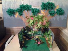 rainforest diorama ideas - Google Search