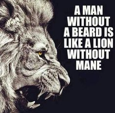 A lion without a mane is a lioness.