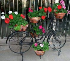 Red geraniums floral bike Front Garden Landscape, Garden Fencing, Garden Planters, House Plants Decor, Plant Decor, Beautiful Gardens, Beautiful Flowers, Bike Planter, Garden Cart