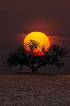 awesome sunset and sunrise photos. Beautiful Moon, Beautiful World, Mother Earth, Mother Nature, Nature Pictures, Cool Pictures, Travel Pictures, Sunset Photos, Stars And Moon