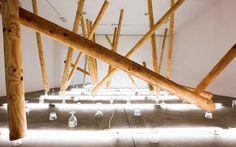 carlito carvalhosa – exposições