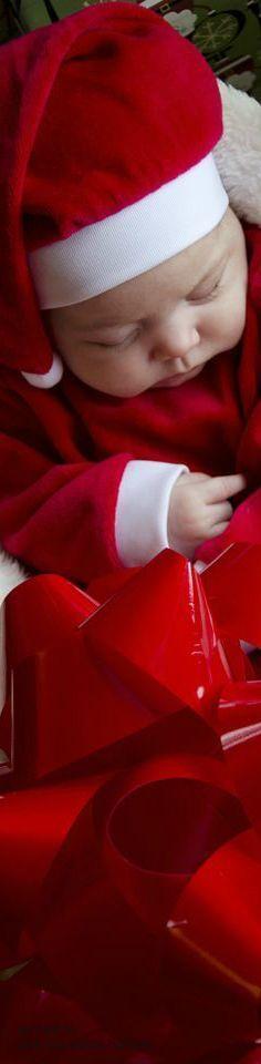 christmas.quenalbertini: Christmas Baby
