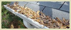 Texas surrounding suburb homeowners can count on Ned Stevens Gutter Cleaning for exceptional service for all professional gutter cleaning needs, including repair, installation, and underground drain snaking. Founded in 1965, it have grown to become a leading provider of a full range of services and annual maintenance plans.    Visit us today for more information at http://www.nedstevens.com/Contents/States/TX.aspx