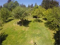 Arcata, Humboldt County, California House For Sale - 6 Acres; nice house on 6 acres in sunny location