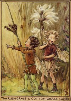 The Fairies of The Winter: The Rush-Grass and Cotton-Grass Fairies