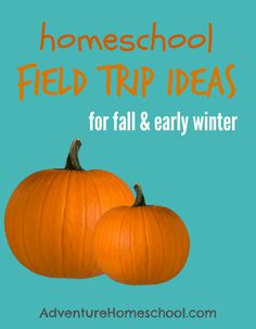 Homeschool Field Trip Ideas for Fall and early winter