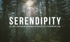 32 Of The Most Beautiful Words In The English Language  Serendipity... One of my favorite words