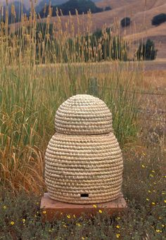 Double skep by Charles Kennard. A double skep makes it possible to remove some honey without destroying the brood nest in the main body of the skep.