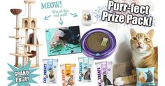 There's lots of purr-fect kitty prizes to WIN, check it out! #treattheirwildside
