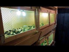 Чертёж трёхэтажного брудера для цыплят - инструкция своими руками - YouTube