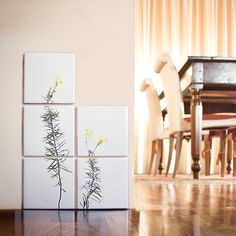 print on ceramic tiles | Linajola Comune #ceramictiles #packaging #sponte collection #ceramic tiles #tiles  #plants #interior design #design#arredamento #livorno #italy