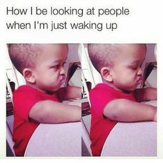 Basically. This is me EVERY MORNING!