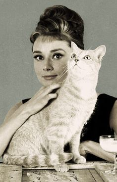 Audrey Hepburn and Cat