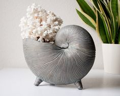 Vintage brass shell planter nautilus seashell flower pot