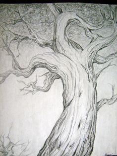 Dessin de l'arbre étude de crayon par paintbylayers sur Etsy