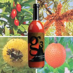 """The wonders of the """"fruit from heaven"""" . My daughter has 1 oz every day and her AO levels are in the top range. Health And Beauty, Health And Wellness, Natural Health Tips, Create Awareness, To My Daughter, How Are You Feeling, Fruit, Nu Skin, Skin Products"""
