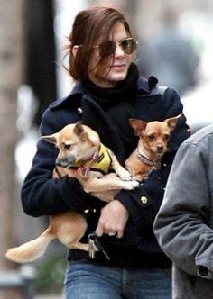 Sandra Bullock no sólo decidió adoptar a Poppy, a quien le faltaba una de sus patitas, sino que tiempo después, regresó al refugió de mascotas de donde la eligió, para adoptar a Rubi, una perrita a quien le faltan dos de sus patas y usa un carrito de perros para andar