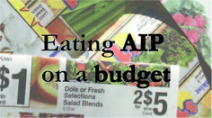It's common knowledge that food is expensive.  And getting moreso by the day!  Eating organic, whole foods is even more expensive.  When I started my AIP journey back in September, Scott had alread...