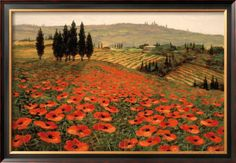 Hills of Tuscany I Poster by Steve Wynne at AllPosters.com