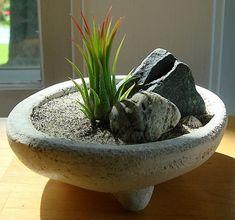 Miniature Zen Garden, Mini Zen Garden, Miniature Gardens, Tropical Garden, Mini Jardin Zen, Sogetsu Ikebana, Air Plants Care, Backyard Garden Design, Backyard Ideas