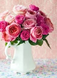 different shades of pink can look good together.