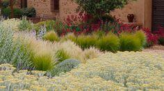 Mediterranean garden.  Landschaft architecture. www.urquijokastner.com