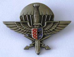 Distintivo de qualificação exclusivo dos operacionais do 102º Batalhão de…