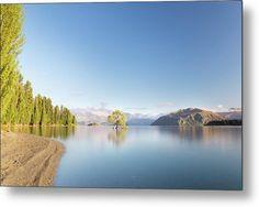 Landscape Metal Print featuring the photograph Wanaka Tree New Zealand Landscape Mountain Lake by Joshua Small