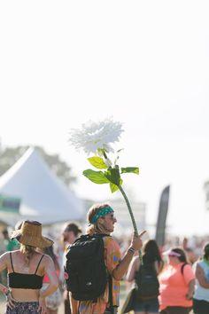 Flower, anyone? Bonnaroo 2015 | The Bluegrass Situation