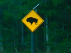 Road sign Yellowstone
