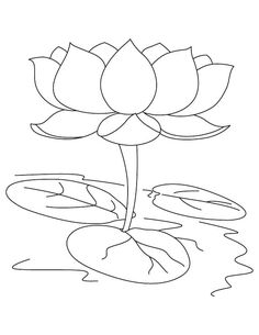 lotus flower coloring pages free.html