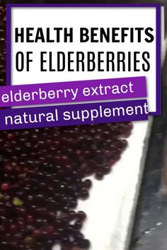 When using Elderberries, I prefer the dehydrate and cook method to ensure the safety of the end product. When consumed raw, elderberries are actually toxic. However, when used correctly, they offer a wide variety of natural health benefits. Once you have a reduced elderberry syrup you can make a number of different products. Elderberry Gummies / Elderry Suckers / Elderberry Tea / Elderberry Jam Elderberry Cough Syrup, Elderberry Benefits, Elderberry Plant, Elderberry Gummies, Detox Organics, Natural Cold Remedies, Natural Supplements, Medicinal Plants, Natural Health