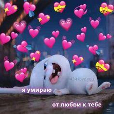 Cute Bunny Cartoon, Cute Cartoon Characters, Cute Cartoon Pictures, Cartoon Memes, Cartoon Pics, Cute Cartoon Wallpapers, Cute Black Wallpaper, Cute Disney Wallpaper, Wallpaper Iphone Cute