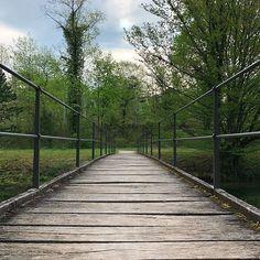 #Brücke #Bridge #Weg #Path #Baum #Tree #Park #BallyPark #Schweiz #Switzerland