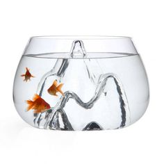 Designed by Aruliden for Gaia and Gino, the Fishscape is a gallon (or gallon for the small size) handmade glass fishbowl with a super cool textured interior landscape. Fish not included. Winner of the Red Dot Design A Aquariums, Glass Fish Bowl, Glass Aquarium, Aquarium Ideas, Goldfish Bowl, Pet Goldfish, Gadgets, Spiritus, Design Awards