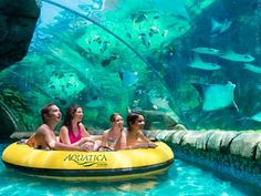 The park's signature attraction takes four-seat rafts down twists and turns to an underwater grotto, where you come face-to-fin with stingrays and tropical fish. It's the only ride of its kind in the world.