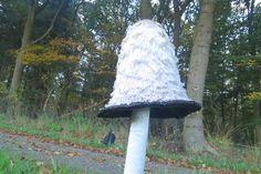 2014-10-19 Mooie inktzwam bij de Eelerberg