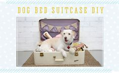 This pet bed is super simple to make!