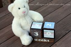 pregnancy count down! today baby Eva is making her way! Pregnancy Countdown, Teddy Bear, My Style, Toys, Creative, Handmade Gifts, Cute, Projects, Baby