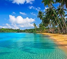 Fascinating Puerto Rico - http://www.travelandtransitions.com/destinations/destination-advice/latin-america-the-caribbean/
