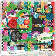 I am fastly becoming regular on www.DesignsbyMeganTurnidge.com for sure. Not only do I adore almost all of her kits, but the elements she chooses to accomodate her papers, the palattes themselves, etc. etc. Her blog theme is awesome too! Aren't these papers gorgeous use of Roy G. Biv's and color combos? I just had to have them! #meganturnidge #scraporchard  by Megan Turnidge