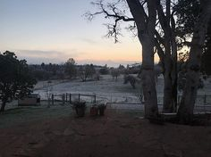 Frosty morning ranch.  Enjoyed the early morning views this week though they were chilly and much too soon after lovely nights of dinner feasts friend meetups Settlers of Catan and family wine tasting. Here's to your one wild and precious life.