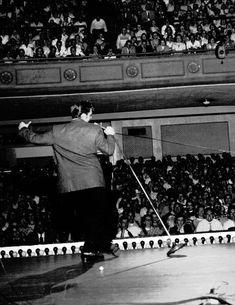 Elvis thrills the crowd at Ellis Auditorium, Memphis, TN. May 15, #Elvis1956.