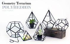 13 Best Geometric Vases Images Bulb Vase Flowers Vase Jars